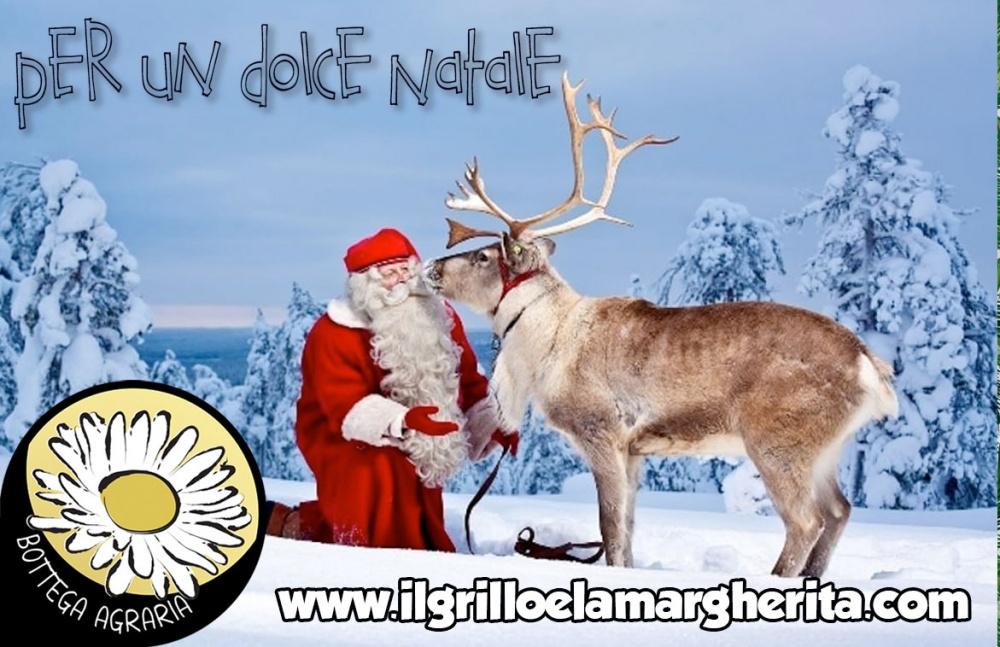 NAT07 - Per un dolce Natale