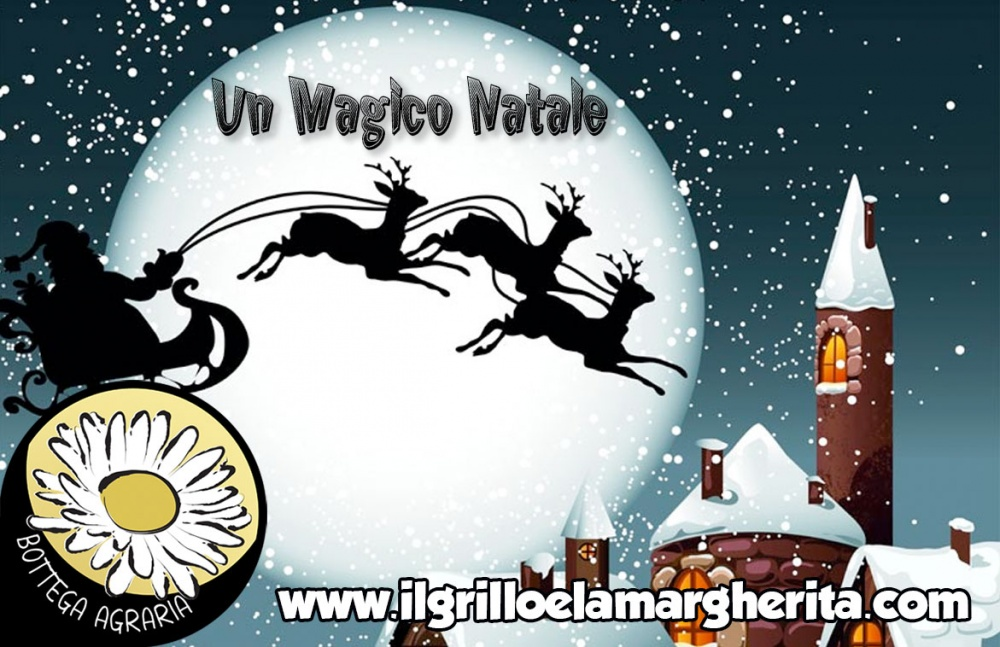NAT08 - Un Magico Natale